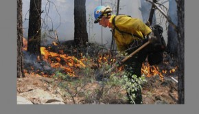 Coconino National Forest fire.