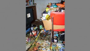 Colorado woman accused of hoarding is facing 52 animal cruelty charges